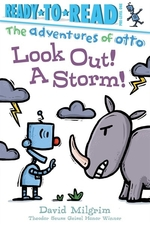 Book cover of LOOK OUT A STORM