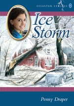 Book cover of DISASTER STRIKES 06 ICE STORM