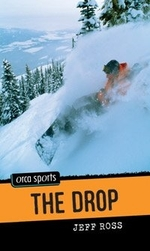 Book cover of DROP