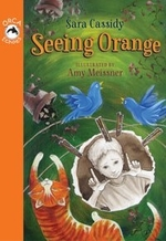 Book cover of SEEING ORANGE