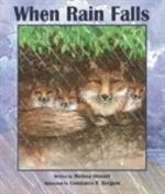 Book cover of WHEN RAIN FALLS