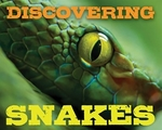 Book cover of DISCOVERING SNAKES HBK
