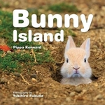 Book cover of BUNNY ISLAND