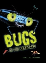 Book cover of BUGS IN THE BACKYARD