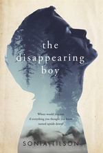 Book cover of DISAPPEARING BOY