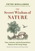 Book cover of SECRET NETWORK OF NATURE