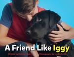 Book cover of FRIEND LIKE IGGY