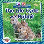 Book cover of LIFE CYCLE OF A RABBIT