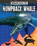Book cover of BRINGING BACK THE HUMPBACK WHALE