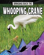 Book cover of BRINGING BACK THE WHOOPING CRANE