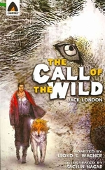 Book cover of CALL OF THE WILD