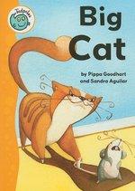 Book cover of BIG CAT