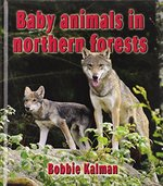 Book cover of BABY ANIMALS IN NORTHERN FORESTS