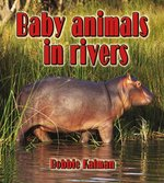 Book cover of BABY ANIMALS IN RIVERS