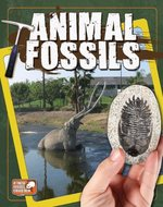 Book cover of ANIMAL FOSSILS