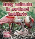 Book cover of BABY ANIMALS IN WETLAND HABITATS