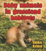 Book cover of BABY ANIMALS IN GRASSLAND HABITATS