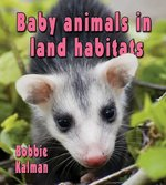 Book cover of BABY ANIMALS IN LAND HABITATS