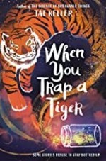 Book cover of WHEN YOU TRAP A TIGER
