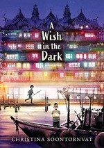 Book cover of WISH IN THE DARK
