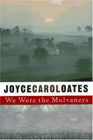 Book cover of WE WERE THE MULVANEYS