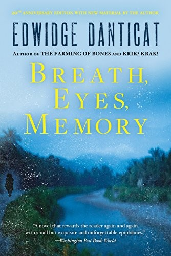 Book cover of BREATH EYES MEMORY