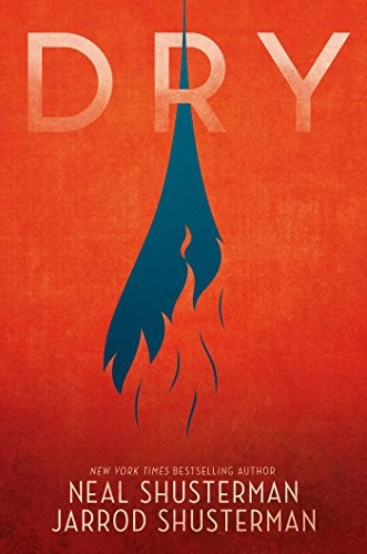 Book cover of DRY