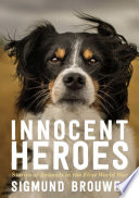 Book cover of INNOCENT HEROES - STORIES OF ANIMALS IN