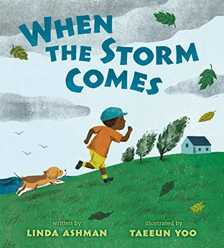 Book cover of WHEN THE STORM COMES