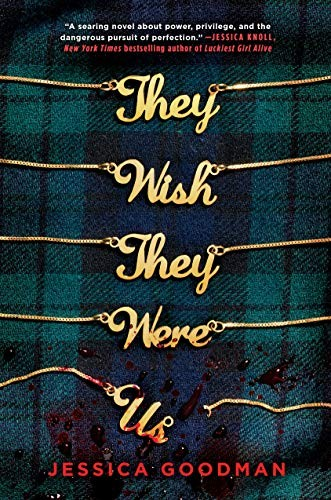 Book cover of THEY WISH THEY WERE US