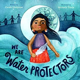 Book cover of WE ARE WATER PROTECTORS