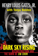 Book cover of DARK SKY RISING - RECONSTRUCTION & DAWN