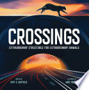 Book cover of CROSSINGS