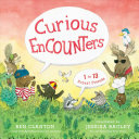 Book cover of CURIOUS ENCOUNTERS