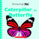 Book cover of CATERPILLAR TO BUTTERFLY