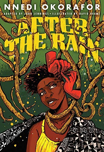 Book cover of AFTER THE RAIN