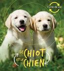 Book cover of CYCLE DE VIE - LE CHIOT ET LE CHIEN