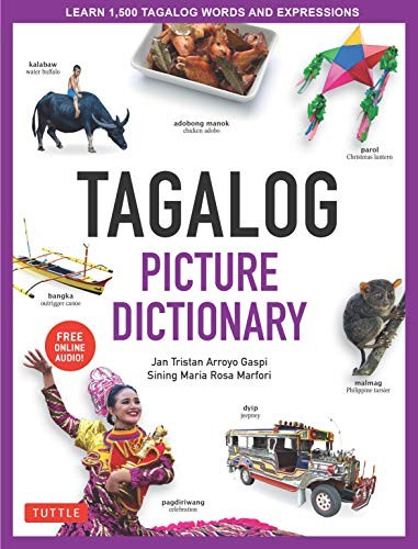 Book cover of TAGALOG PICTURE DICT