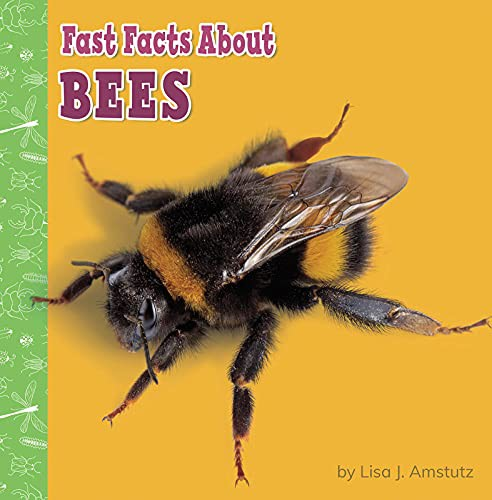 Book cover of FAST FACTS ABOUT BEES