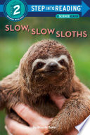 Book cover of SLOW SLOW SLOTHS