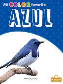 Book cover of AZUL