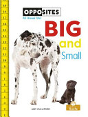 Book cover of BIG & SMALL