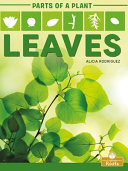 Book cover of LEAVES