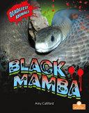 Book cover of BLACK MAMBA